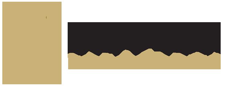 Lion's Gear Solutions